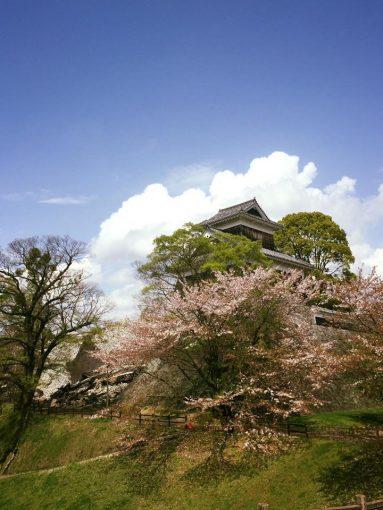 石垣の崩れた熊本城