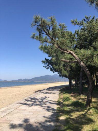 唐津城へ続く浜辺