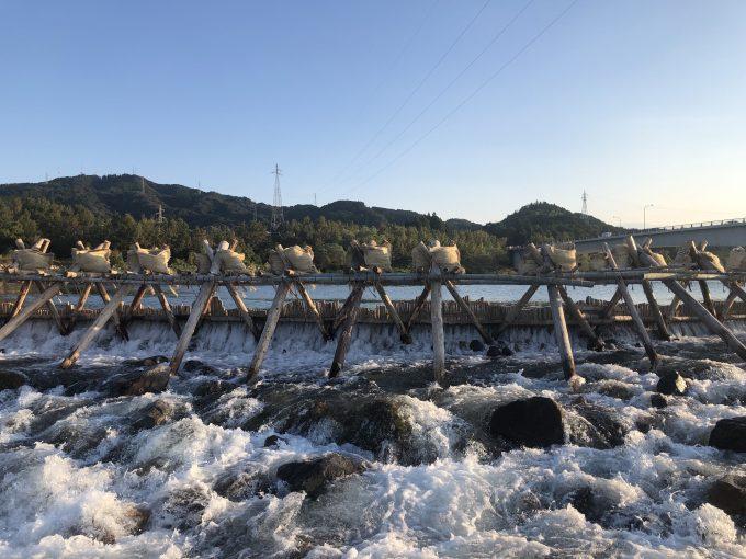 宮崎県延岡市 川幅100mを超える箇所に架設された「鮎やな」